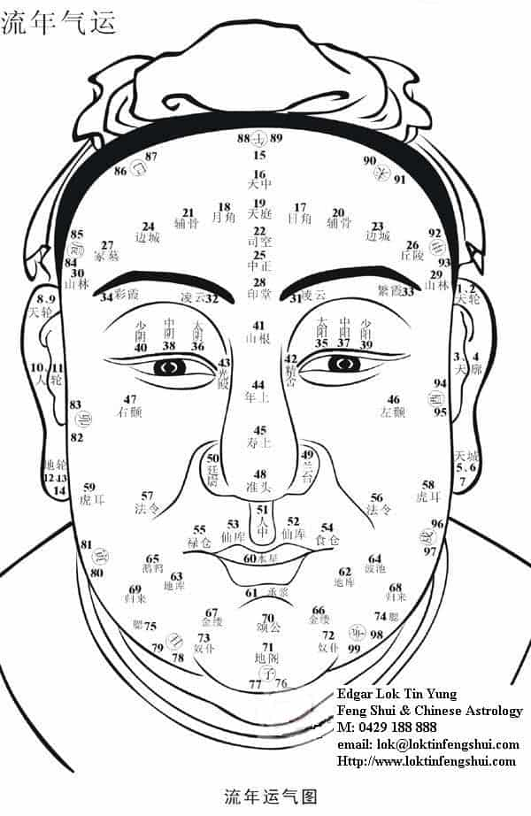 100 spots on Face reading