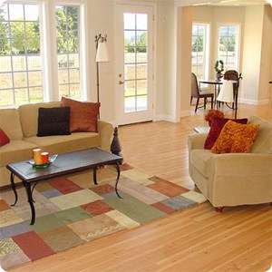 feng shui home attracts money